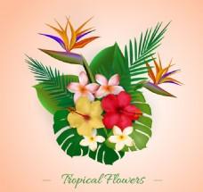 彩色热带植物花束矢量
