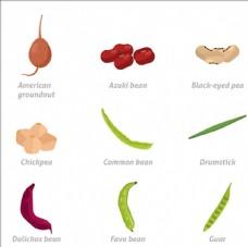 常見的蔬菜插圖