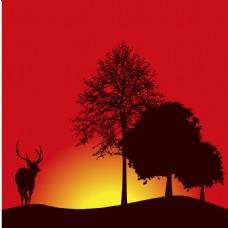 日出黄昏大树背景