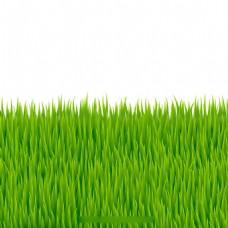 写实风格绿草背景