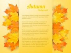 秋天背景素材