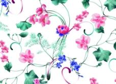 荷叶花朵图案