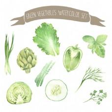 水彩绘绿色蔬菜