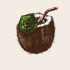 手绘椰子汁插图