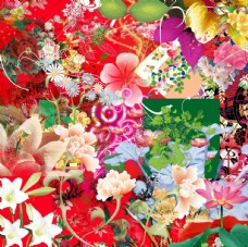 浪漫花朵花纹分层素材
