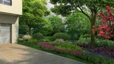 车库 花园 路边 绿化 小树