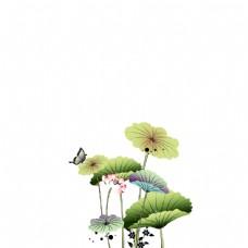 手绘荷叶蝴蝶