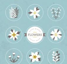 冬季花卉植物模板源文件宣传活动