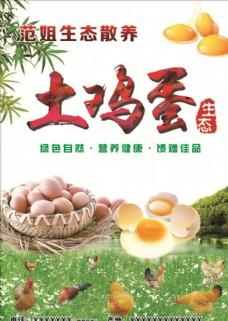 生态散养土鸡蛋