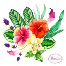绿叶扶桑花图案图片