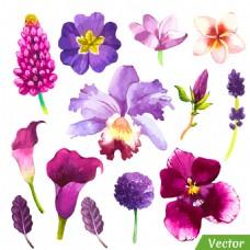 水彩花朵图案图片