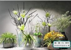 花艺花瓶 陈设品植物 组合模型