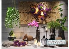植物墙 花艺 陈设品 摆件壁饰