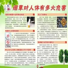 烟草对人体有多大危害