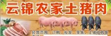 农家土猪肉   名片
