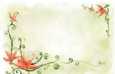 尖角花背景图