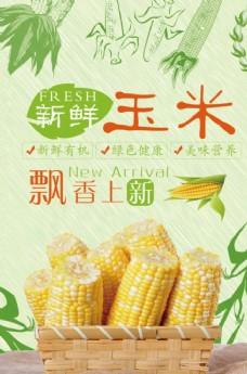 玉米宣传海报