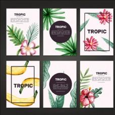 水彩夏日热带植物卡片组