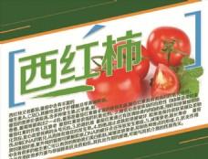 西红柿简介 蔬菜简介 水果简介