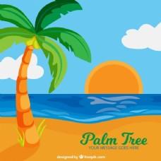 带棕榈树背景的彩色日落