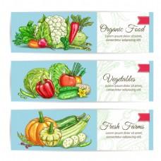 简约蓝色健康蔬菜水果海报卡片背景矢量