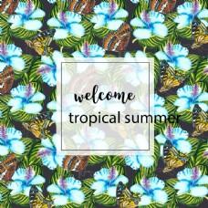 水彩画的热带背景