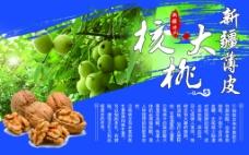 新疆薄皮大核桃促销海报