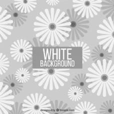 白色和灰色的花朵背景