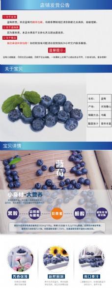 蓝莓详情页淘宝电商美食水果