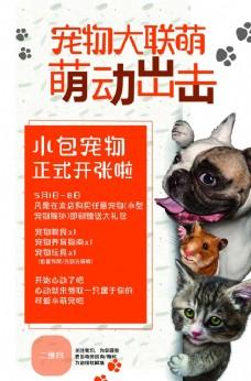 简约宠物促销优惠海报