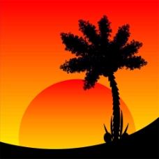 椰树与太阳图片