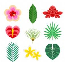 彩色热带花卉和叶子矢量