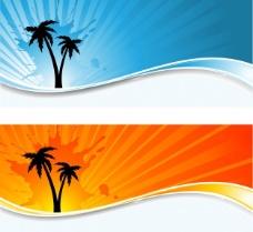 棕榈树在阳光背景的剪影