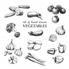 手绘蔬菜插画