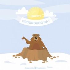 微笑的土拨鼠和太阳平背景