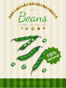 豌豆背景素材