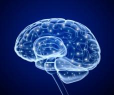 科技大脑背景图