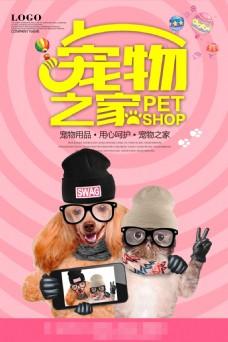 宠物之家促销海报
