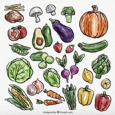 健康食品水彩包