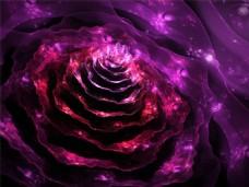 紫罗兰花科技背景图