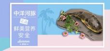 精品 鱼 banner 电商模板