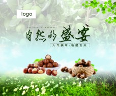 森林坚果海报