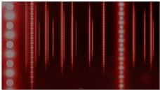 红色竖排珠帘光效背景视频素材