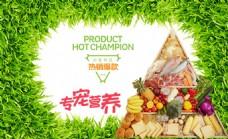 营养养生食材保健海报