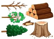 白色背景下的树和柴