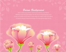 粉红色装饰图案