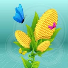 黄色玉米背景图
