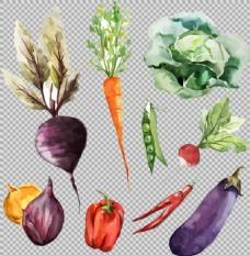 手绘风格各种蔬菜免抠png透明图层素材
