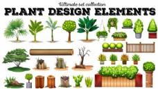 多种植物插画
