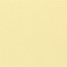 黄色素色壁纸